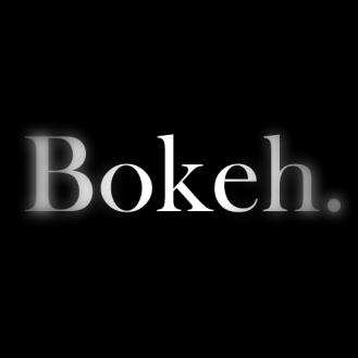 bokeh logo